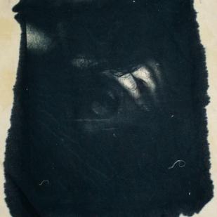 cyanotypes11