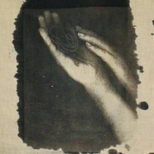 cyanotypes12