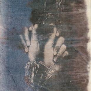 cyanotypes6