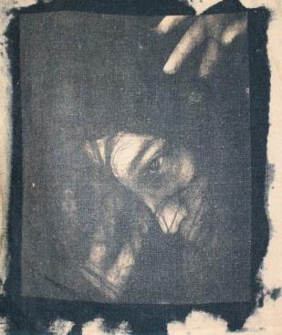 cyanotypes7